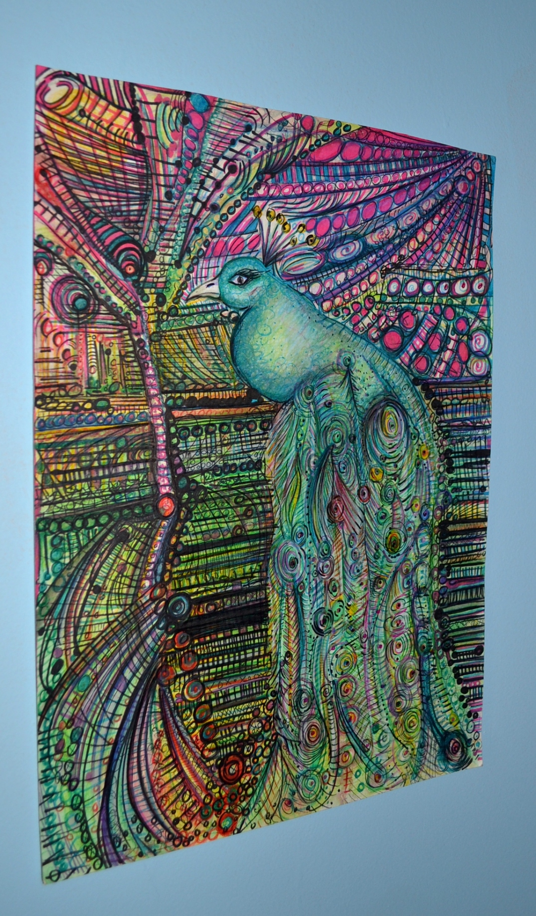 peacock drawing sideview